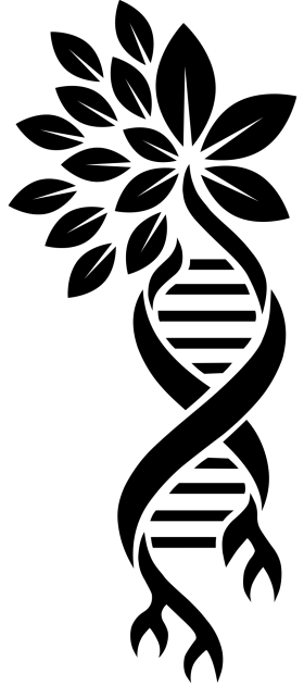 CosmicRootsDNALogo-B-Sml